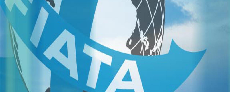Международный экспедитор грузов (диплом FIATA)